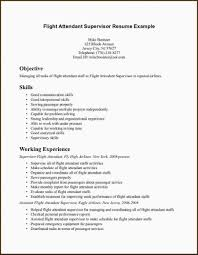 Flight Attendant Resume Examples Inspirational Resume Templates No
