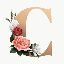 elegant floral alphabet font letter C ...