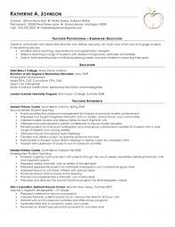 Food Server Resume Interesting Server Resume Skills Examples Enchanting Literarywondrous Food