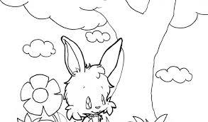 Coniglio Da Disegnare Per Bambini