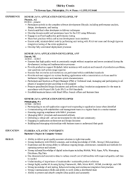 Senior Java Developer Resume