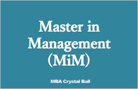Career Options And Average Salaries After Mim Degree Management