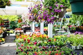 garden center landscape company