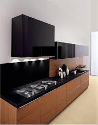 modern black kitchens. Perfect Modern Modern Kitchen Cabinets Pictures Black On Kitchens
