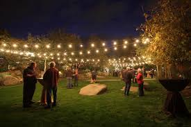 lighting ideas for backyard party stone brewery party backyard party idea lawn party
