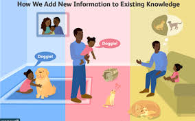 Piagets 4 Stages Of Cognitive Development Explained