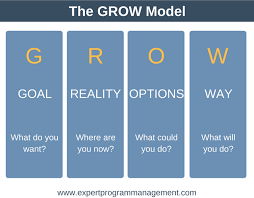 Coaching Plan Template New The GROW Model A Simple Coaching Tool With FREE Template