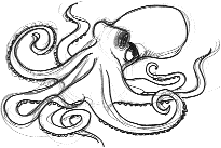 Small Picture Simple Octopus Drawing 64d2e5f3b964805cb8726bba11bf246ejpg