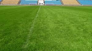 Closeup image of natural green grass soccer field Stock Video