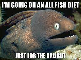Image result for halibut gifs