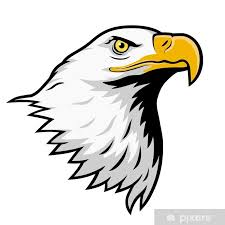 Nálepka Orel Bělohlavý American Eagle Barevné Verze Pixerstick