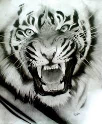 Pin Uživatele Maruška Na Nástěnce Tiger Nápady Na Tetování