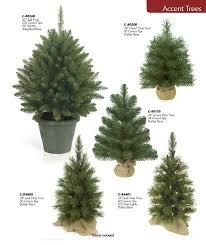 Coloring Page Christmas Tree  Img 18524Christmas Trees Small