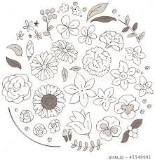 セピア バラ 薔薇 ローズのイラスト素材 Pixta