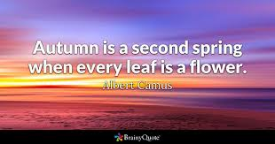 Albert Camus Quotes Classy Autumn Is A Second Spring When Every Leaf Is A Flower Albert