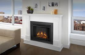 image of free standing ethanol fireplace