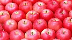Apple Fruit Wallpaper 1920×1080 #02237 ...