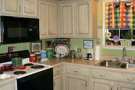 paint for kitchen cabinets colors extraordinary good color to paint kitchen cabinets with stainless steel kitchen