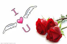 2000x1320 i love u rose wallpaper hd i