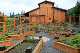 raised bed vegetable garden made of wood decorating with stones and pebbles in a backyard of a large barn with an iron trellis fence surrounds