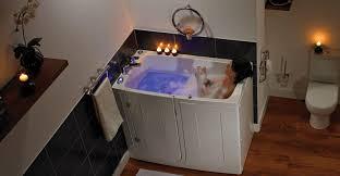 walk in baths grab bar