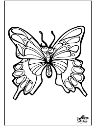 Farfalla 4 Insetti