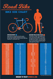 Bicycle Size Chart Bike Size Chart 2019 The Ultimate Guide With