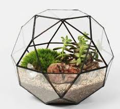 Geometric Glass Terrariums for Home/Office/Wedding Decoration, Creative  Geodesic Dome Terrariums of Plants and Fish on Aliexpress.com | Alibaba  Group