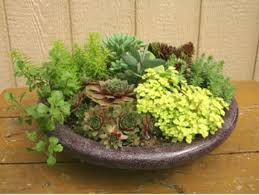 Small Picture Outdoor Container Gardening Planting a Beautiful Pot of Flowers