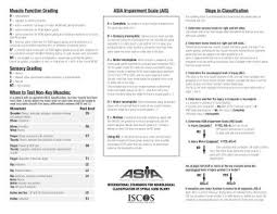 Spine Levels Chart American Spinal Cord Injury Association Asia Impairment