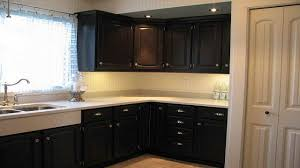 Best Cabinet Color For Small Kitchen Color Combinations San