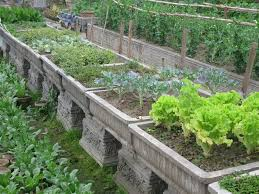 Small Picture How To Design A Vegetable Garden markcastroco