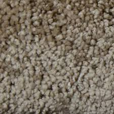 home decorators collection carpet sample great moments ii s