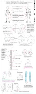 Human Proportions Chart Pin On Art Is Elementary