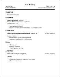 Resume Only One Job Beautiful Resume Only One Job Ideas Simple Office Nice Template 11