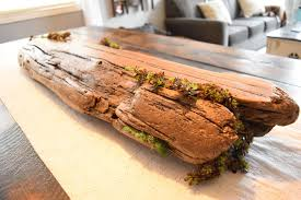 the driftwood had a number of deep crevices which offered the perfect amount of space to fill with some artificial succulents and green moss
