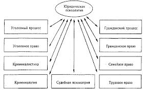 Реферат Юридическая психология com Банк рефератов  Юридическая психология