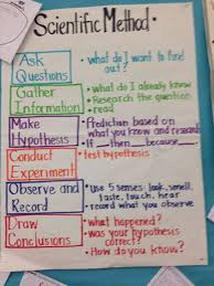 The Scientific Method Worksheet Worksheet Fun And Printable