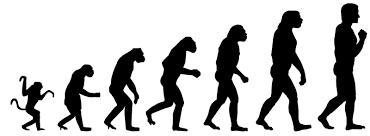 Теория Дарвина опровергнута  Теория Дарвина опровергнута Чарльз Дарвин Эволюция Наука Генетика длиннопост