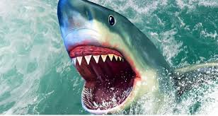 shark wallpaper 3d.  Shark Custom 3D Wallpaper 3d Floor Tile Sea Shark Flooring Wear Non  Slip Waterproof Thickened Self Adhesive PVC Wallpaperin Wallpapers From Home  In Shark Wallpaper L