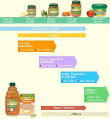 Gerber Feeding Chart For 6 Month Old When To Start Solid Foods For Baby And Baby Feeding Schedule