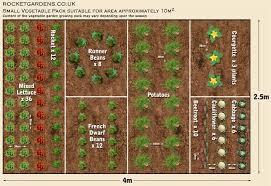 Small Picture Small Vegetable Garden Plan CoriMatt Garden