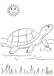 Cartoon Turtle coloring page | Free Printable Coloring Pages