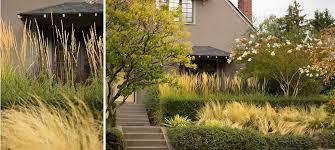 Garden Design Portland Amazing Lilly Villa Garden Design Portland Or Gardening And Outside