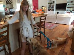 home office multitasking. perfect office shana proves that taking notes during a meeting at clientu0027s home and  playing with these sweet pups is all in days work inside home office multitasking l