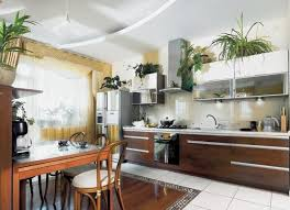 Greenery Above Kitchen Cabinets Ideas In L Shaped Kitchen Cabinets And  Other Related Images Gallery: