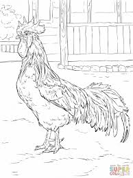 Robot Chicken Coloring Pages Cow And Chica The Free Realistic Little