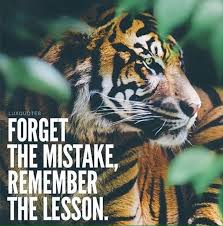 Tiger Quotes 43 Awesome Tiger Quotes Gallery WallpapersIn24knet