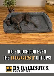 big dog furniture. Big Dog Furniture Beds For Our Gentle Giants By Ballistics S