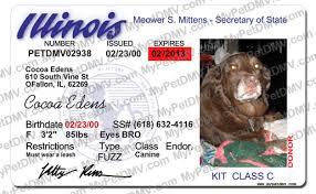 License Id Pet Id Illinois License Pet Illinois